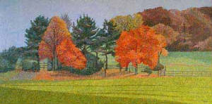 Chester_County_AUtumn_Landscape_____.jpg